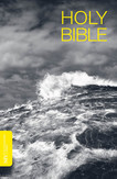 NIV Ocean Thinline Bible